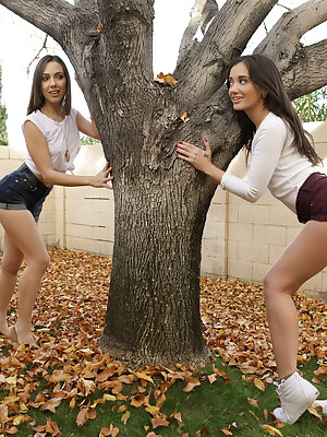 Gia Paige and Jenna Sativa enjoy romance in the fall, chasing each other around a tree. Their play gets increasingly naughty as they shower each other's bottoms with leaves. Eventually they exchange a kiss through the tree's branches and then take things