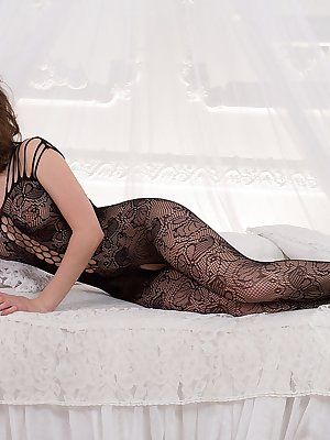 Dakota A looking deliciously tempting clad in a black lace bodysuit